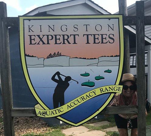 Kingston Expert Tees