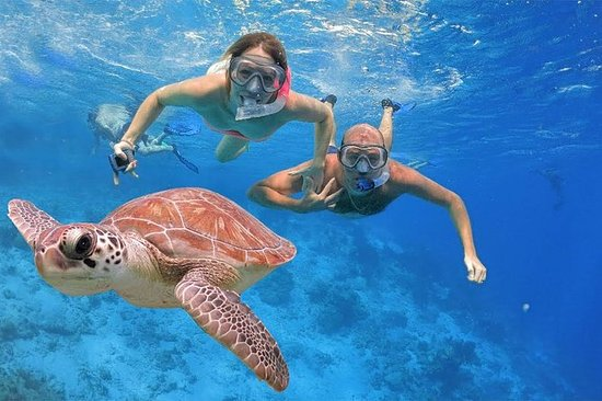 Viaje de snorkel en Bali en Blue...