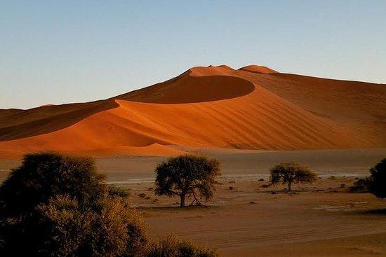 Namibian Highlights Safari 15 días...