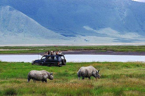 ンゴロンゴロクレーター国立公園の1日参加グループサファリ