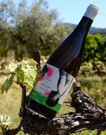 Cabaces, Spanien: Traca i Mocador Blanc DO Montsant. Celler Mas de les Vinyes.
