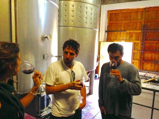 Cabaces, Spanien: Visitar Celler Mas de les Vinyes. Vinos DO Montsant. Mas de les Vinyes es una bodega de vinos DO Montsant situado en  Cabacés, Comarca del Priorat.