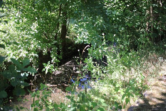 Waldbroel, Alemanha: Genießen Sie die Ruhe am Bachlauf unmittelbar an der Ferienwohnung