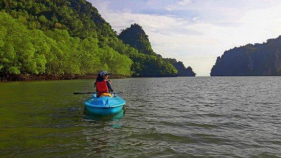 Good Morning Nature Kayaking Picture Of Dev S Adventure Tours Langkawi Tripadvisor