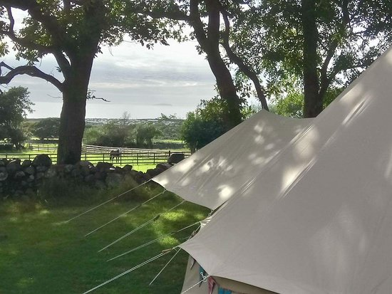 Tal-y-Bont, UK: view from glamping bell tent