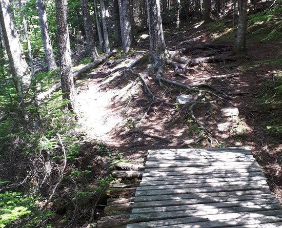 Strait Area Trails