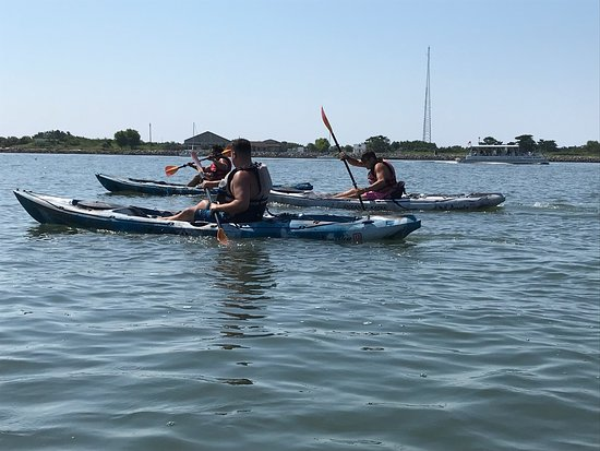 Cape Kayaks (Cape May) - 2019 All You Need to Know BEFORE