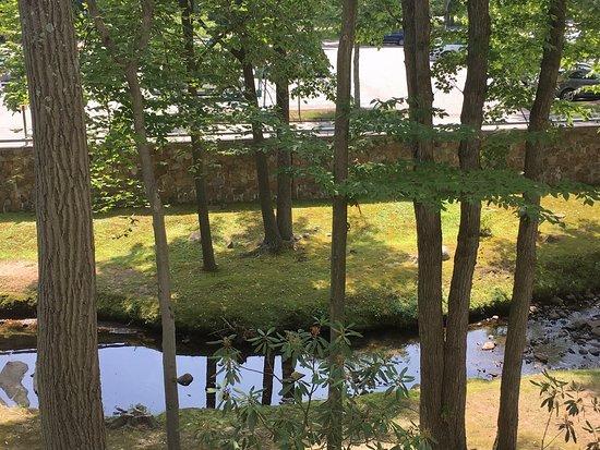 Park Ridge, NJ: Entorno mágico!
