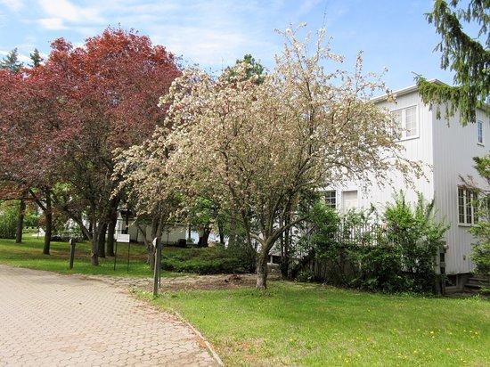 Maison Paul-Emile Borduas: La maison est située près de la rivière Richelieu.  On retrouve un très petit stationnement.  Vérifiez les heures d'ouverture sur le site web du musée des beaux-arts du Mont Saint-Hilaire