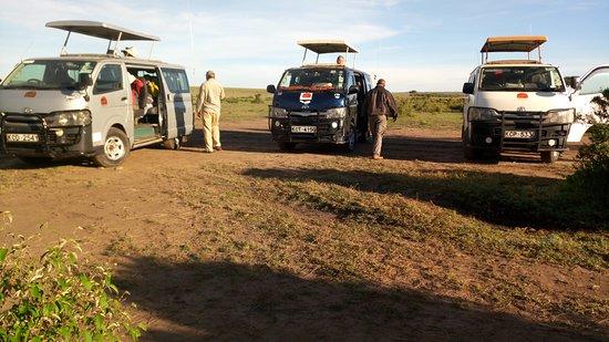 Seremara Safaris