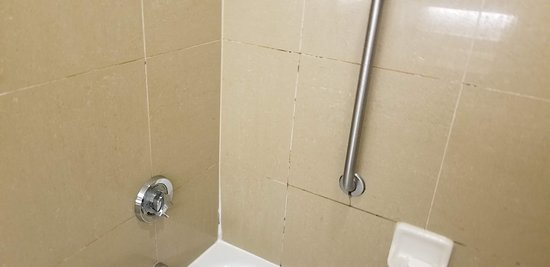 Doubletree by Hilton Hotel Hartford - Bradley Airport: Mold everywhere in showers.