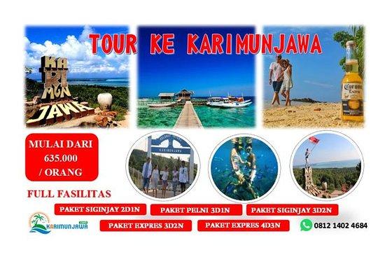alya tour