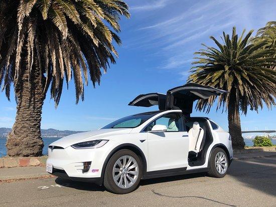Treasure Island: Fully Loaded Tesla Model X