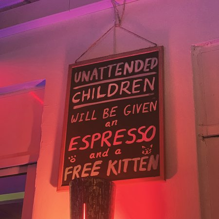 Jungle Bar Cafe