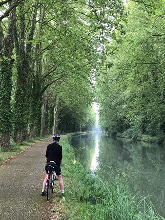 Typical stretch of Garonne Canal cycle path