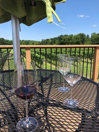 Summer Ohio Wine Tour