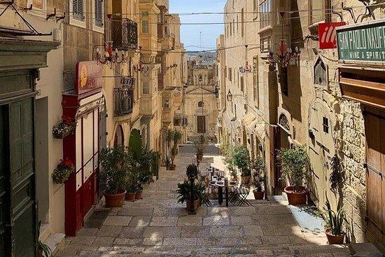 Privat hel dagstur på Malta