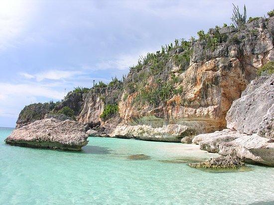 Combinazione di natura Laguna di