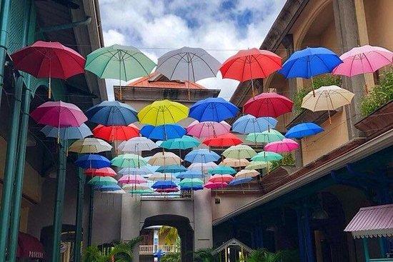 Giro turistico nel nord di Mauritius