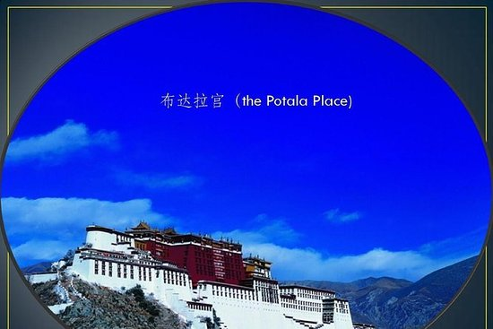 Wild yak tibet tour trips