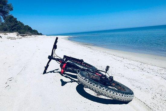 Giro in mountain bike elettrico / fat