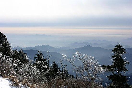 [8天]征服朝鲜半岛和Jirisan国家公园徒步旅行