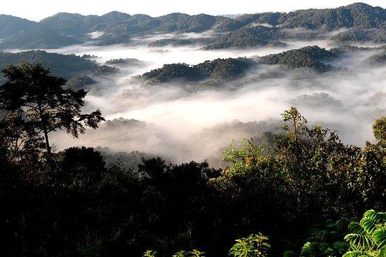 徒步山脉Bisoke和/或Gahinga或金猴徒步旅行