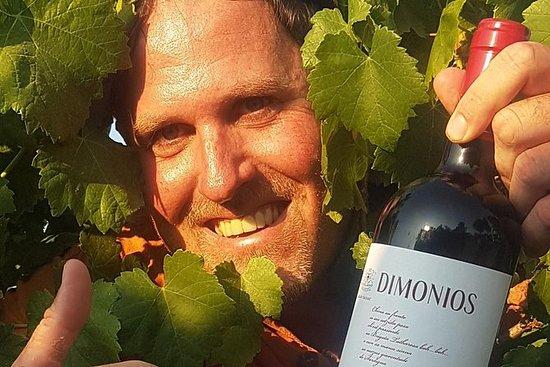 Halbtägige Weinprobe mit Hellovino