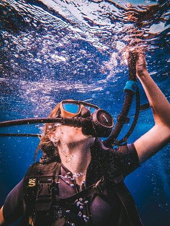 Dpm Diving: Agustina iniciando su descenso
