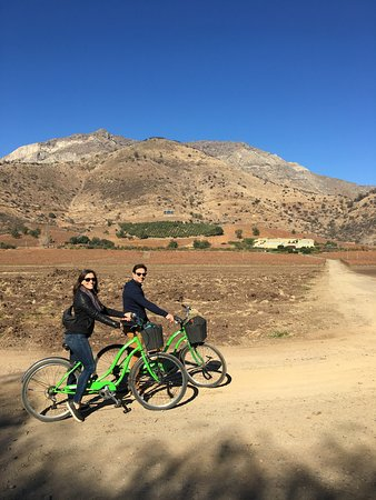 Fiets- en wijnreis Halve dag Maipo-vallei: Bike touring the winery
