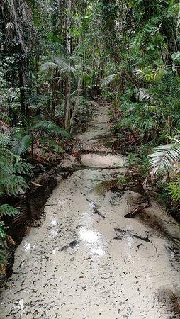 Vacanza nel Queensland