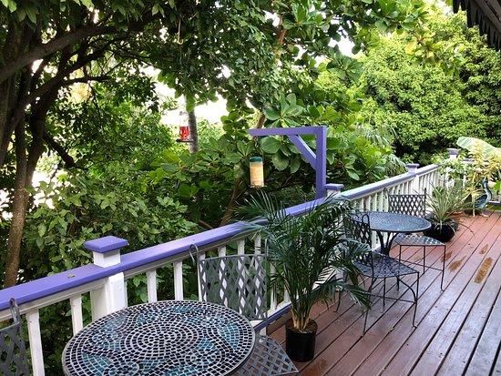Balcony Picture Of Garden By The Sea B B Cruz Bay Tripadvisor