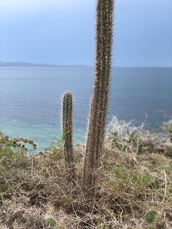 Foto de Islas costeras