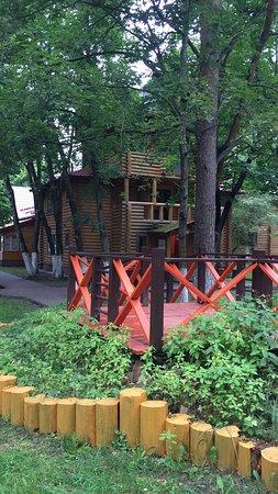 Sosnovyy Bor ภาพถ่าย