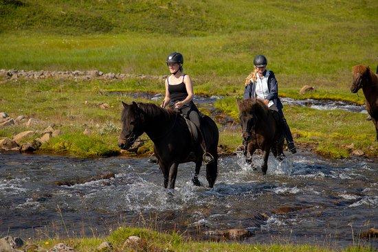 Husavik, Islandia: Crossing Eyjardalsá at the start of the tour