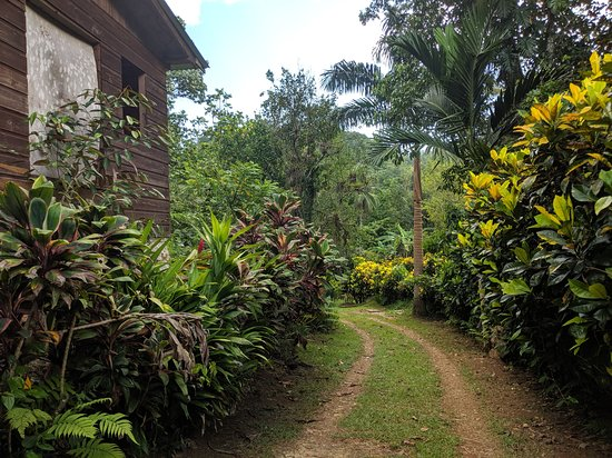 Wakefield, جامايكا: The grounds
