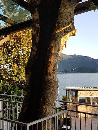 Una piacevole sorpresa a tutto lago di Lecco,a 30 minuti da casa