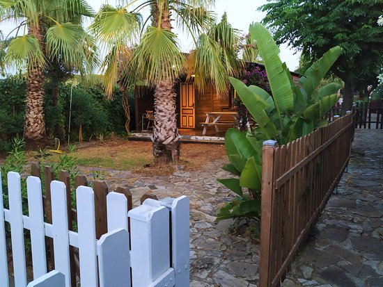 Roche, Espagne : Chocolate Cottage!!! 1 queen bed, 1 single bed, plus 1 sofa that converts into a single bed. BBQ, Exterior shower, wifi..