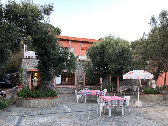 wunderschöne Terrasse unter alten Olivenbäumen
