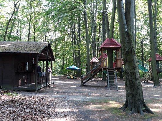 Park linowy Lesna Przygoda