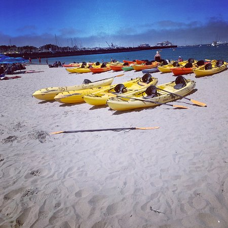 Monterey Bay Kayaks - Updated 2019 - All You Need to Know