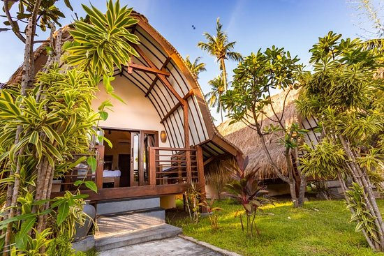 Oceans 5 Dive Resort: Our Stunning Pool Bungalows feature a king size bed, air conditioning, en-suite bathroom with hot water, pool view terrace, TV, fridge, in-room safe, Wi-Fi, a la carte breakfast and free flow of coffee, tea and water is included.