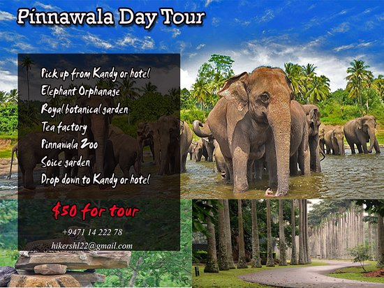 ‪‪Rambukkana‬, سريلانكا: HIGHLIGHTS