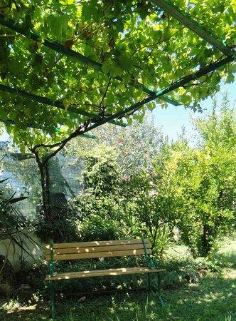 Misano Monte, Włochy: Esterno