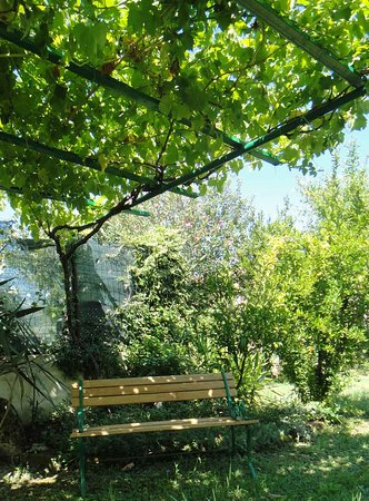 Misano Monte, อิตาลี: Esterno