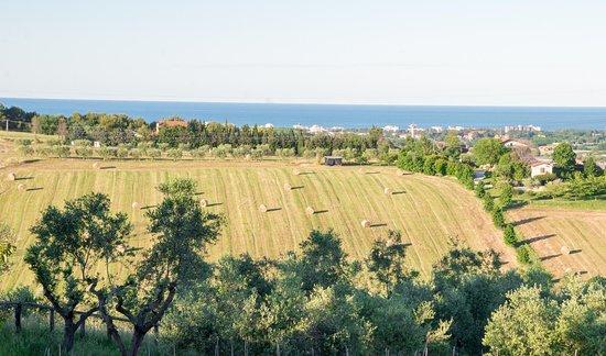 Misano Monte, อิตาลี: Vista dal BeB Alba sul mare