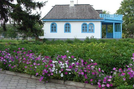 Kolodyazhne, Ucrania: Дом Леси