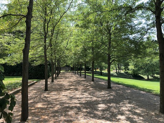 The Allee Of Trees Just Part Of The Beautiful Landscape Design
