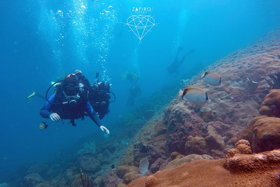 Zafiro Divers