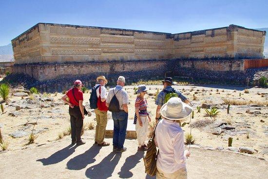 Oaxaca Experience Tours
